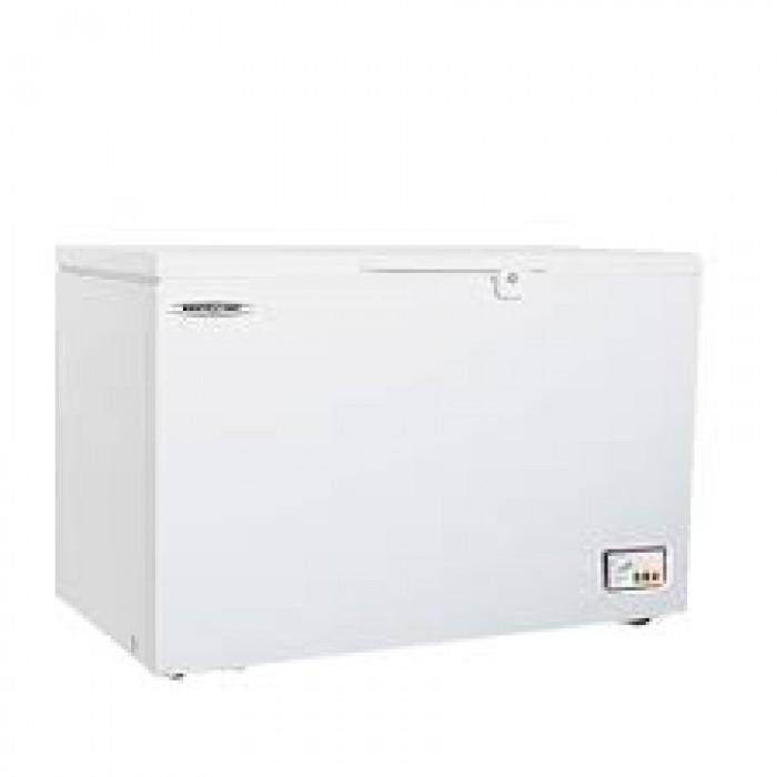 Restpoint 300L Single Door Deep Freezer | RP 360
